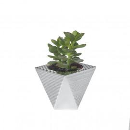 Argenesi vaso natura piramide 7 cm