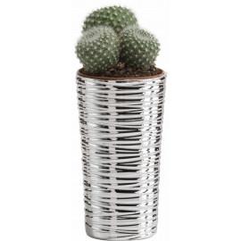 Argenesi vaso natura cono 10,5 cm